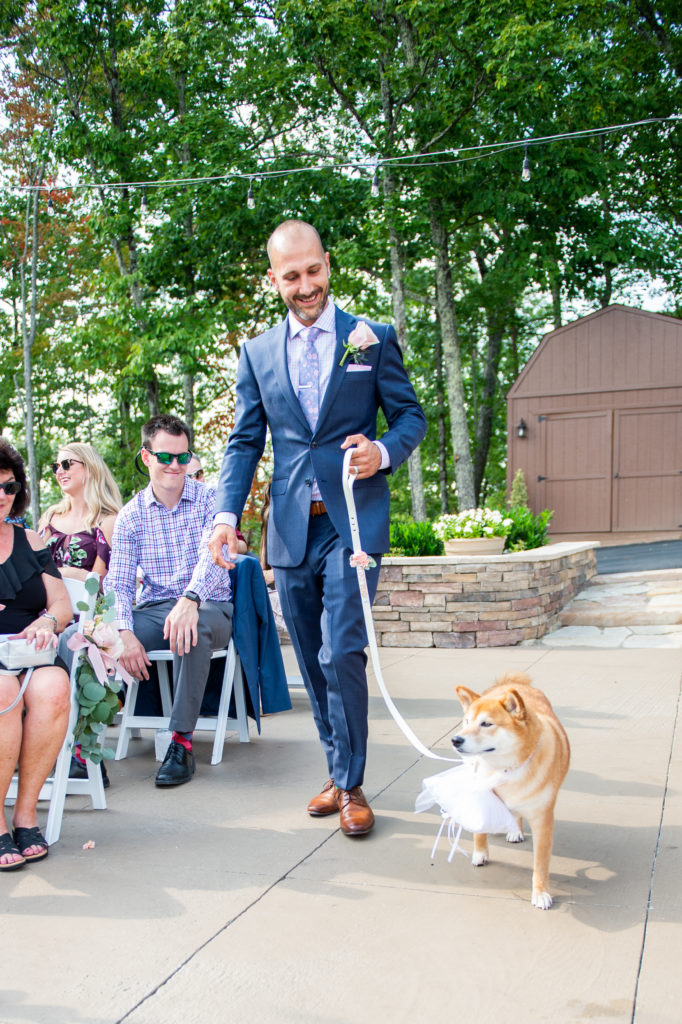 Dog ring bearer | The Magnolia Venue | Pigeon Forge TN