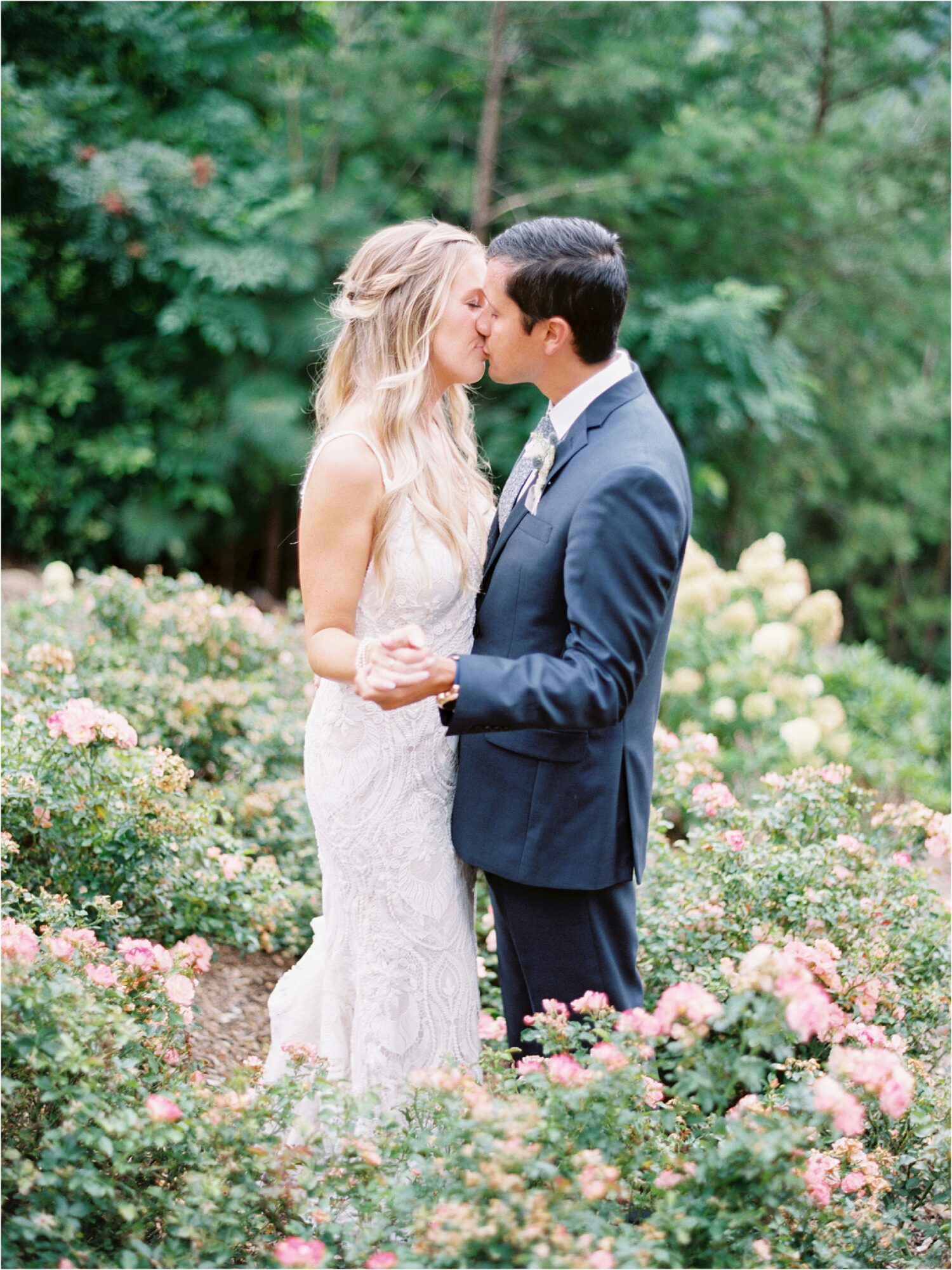 bride and groom kissing in bed of rose bushes